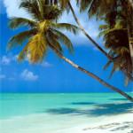 Waarheen ga jij op vakantie deze zomer ?