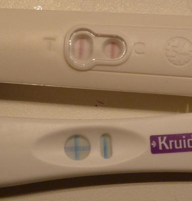 zwangerschapstest (c) Kirsten Vos/ Indisch3.0 2011
