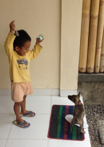 """Anjing!!!!!"". Foto: Dewi Reijs."