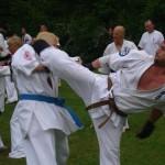 Martial arts bij 3.0 #3: Taekwondo
